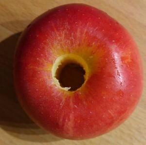 Apfelbutzen mit einem Stick entfernt. So ein Tag muss gut starten.