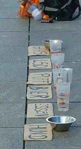 Einfallsreich. Straßenbetteln für Gras, LSD, Puff, Bier, Essen und Hund. Den Passanten gefiel's.